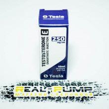 Testosterone E (Tesla)
